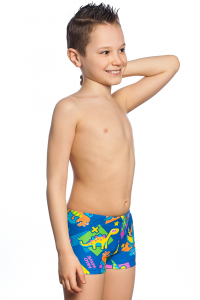 Boys swimshorts DINOS